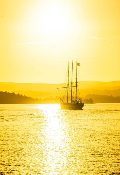 Boat trips in Oslo - Photo Evina Schmidova (27)
