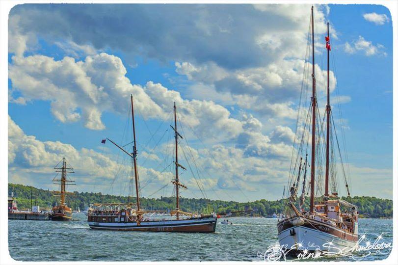 Boat trips in Oslo - Photo Evina Schmidova (3)