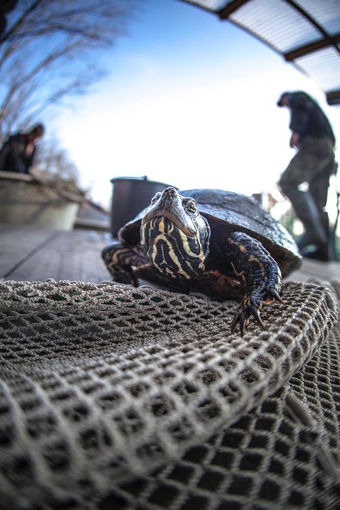 Fishing out - Photo Evina Schmidova (8)