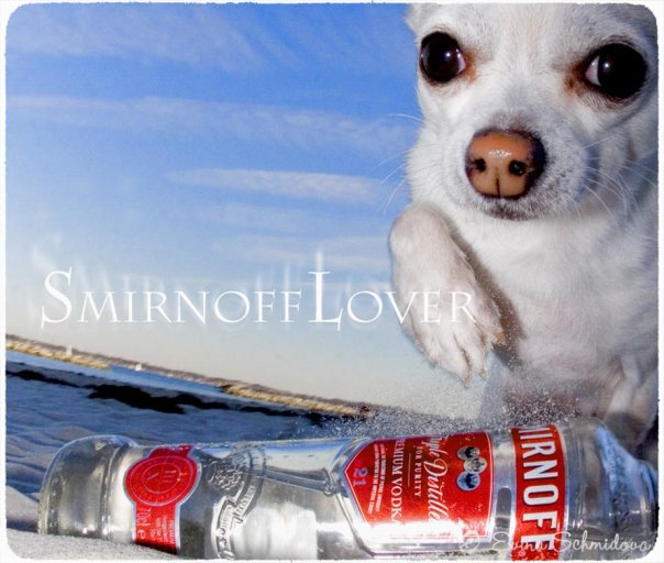 Smirnoff Lover - Photo Evina Schmidova (17)