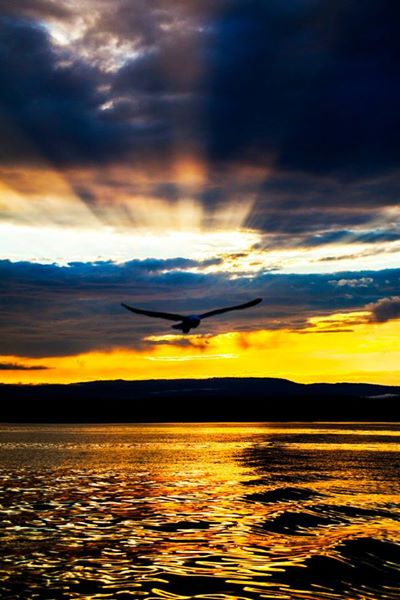 Sunset - Photo Evina Schmidova (7)